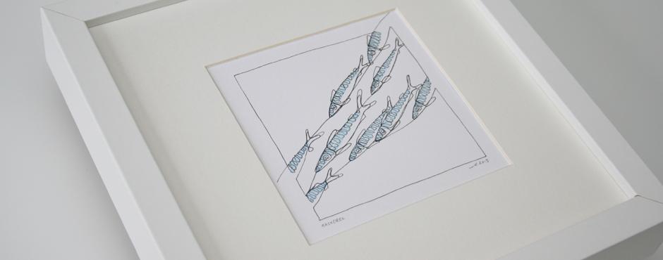 mb_mackerel_doodle