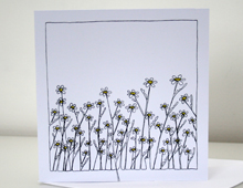 daisies_card_feature